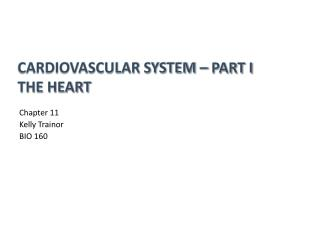 Cardiovascular System – Part I The Heart