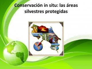 Conservación in situ: las áreas silvestres protegidas