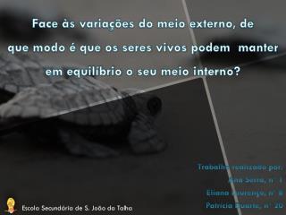 Trabalho realizado por: Ana Serra, nº 1 Eliana Lourenço, nº 8 Patrícia Duarte, nº 20