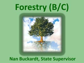 Forestry (B/C)