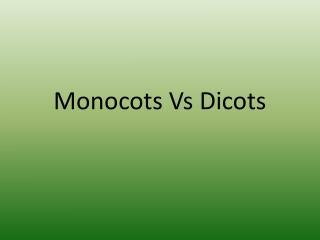 Monocots Vs Dicots