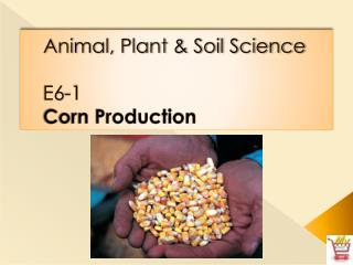 Animal, Plant & Soil Science E6-1 Corn Production