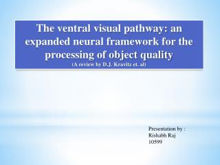 The ventral visual pathway: an expanded neural framework for the processing of object quality