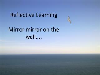 Reflective Learning Mirror mirror on the wall....