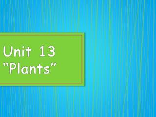 """Unit 13 """"Plants"""""""