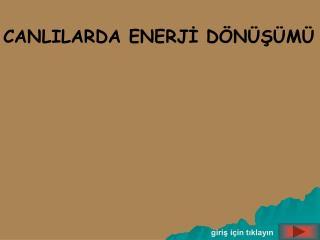 G NES ISIG ININ KIMYASAL ENERJIYE D N S M