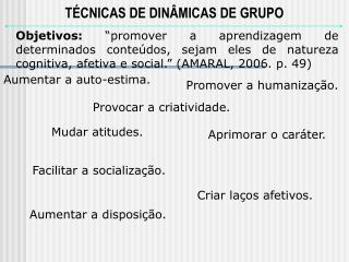 T�CNICAS DE DIN�MICAS DE GRUPO