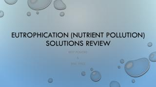 Eutrophication (nutrient pollution) solutions review
