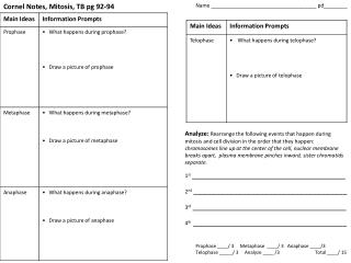 Cornel  Notes, Mitosis, TB pg 92-94