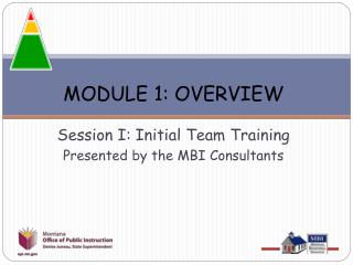 MODULE 1: OVERVIEW