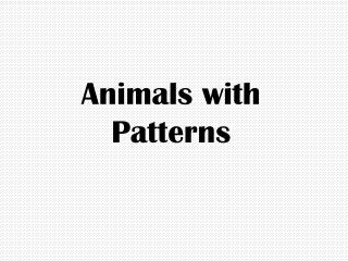 Animals with Patterns