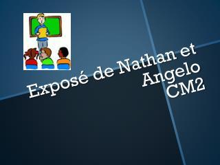 Exposé de Nathan et Angelo  CM2