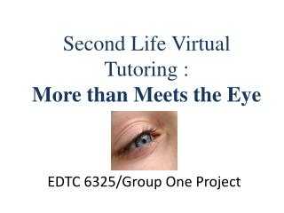 Second Life Virtual Tutoring:  More than Meets the Eye