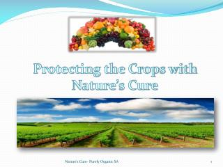 Protecting the Crops with  Nature�s Cure