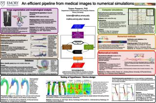 An efficient pipeline from medical images to numerical simulations