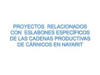 PROYECTOS  RELACIONADOS CON  ESLABONES ESPEC FICOS DE LAS CADENAS PRODUCTIVAS  DE C RNICOS EN NAYARIT