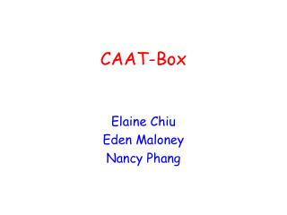 CAAT-Box