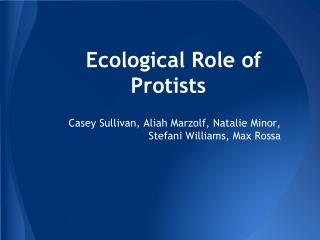 Ecological Role of Protists