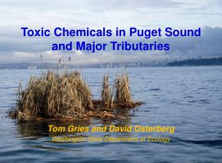 Toxic Chemicals in Puget Sound and Major Tributaries