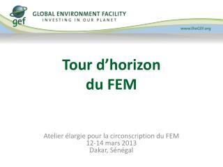 Tour d�horizon du FEM