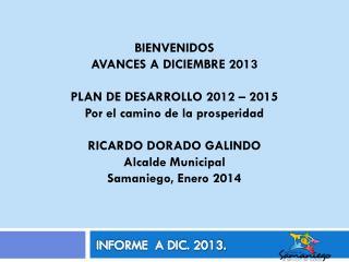INFORME  A DIC. 2013.