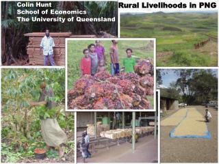 Rural livelihoods in PNG