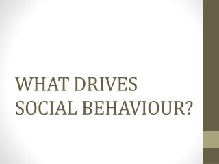 WHAT DRIVES SOCIAL BEHAVIOUR?