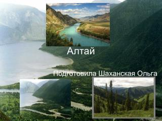 Test Altay