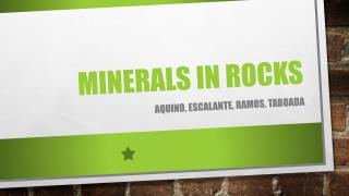 Minerals in rocks