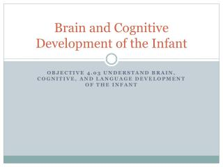 Brain and Cognitive Development of the Infant