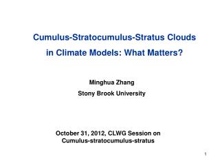 Cumulus-Stratocumulus-Stratus Clouds in Climate Models: What Matters?