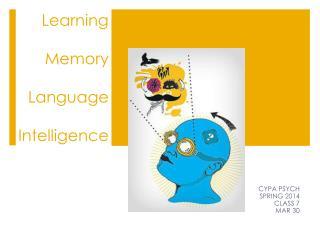 Learning Memory Language Intelligence
