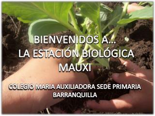 BIENVENIDOS  A…  LA  ESTACIÓN BIOLÓGICA MAUXI C OLEGIO  MARIA AUXILIADORA SEDE PRIMARIA