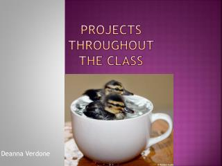 Projects  Throughout  The Class