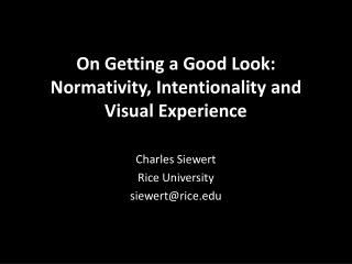 On Getting a Good Look:  Normativity , Intentionality  and Visual Experience