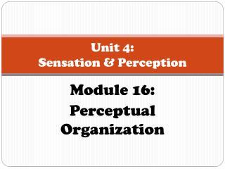 Unit 4:  Sensation & Perception