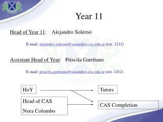 Head of Year  11 :     Alejandro  Solernó