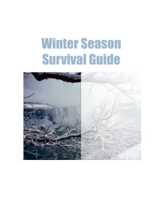 Your Winter Survival Guide