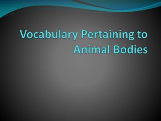 Vocabulary Pertaining to Animal Bodies
