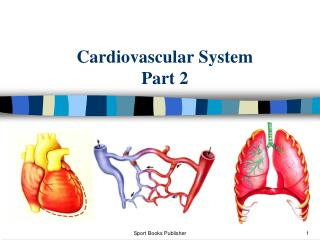 Cardiovascular System Part 2