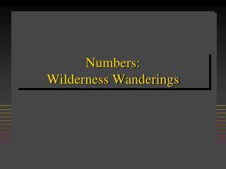 Numbers:   Wilderness Wanderings