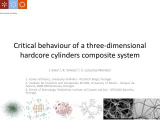 Critical  behaviour  of a three-dimensional hardcore cylinders composite system