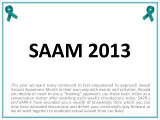 SAAM 2013