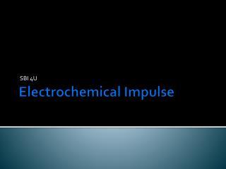 Electrochemical Impulse