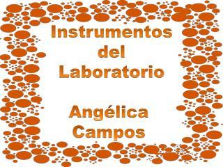 Instrumentos  del  Laboratorio Angélica  Campos