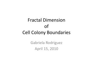 Fractal Dimension  of  Cell Colony Boundaries