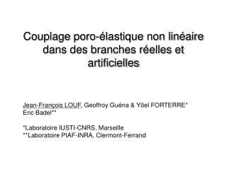 Couplage poro-élastique non linéaire dans des branches réelles et artificielles