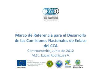 Antecedentes del CCA