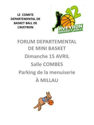 LE  COMITE DEPARTEMENTAL DE BASKET BALL DE L'AVEYRON