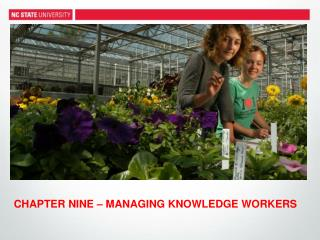 CHAPTER  NINE – MANAGING KNOWLEDGE WORKERS